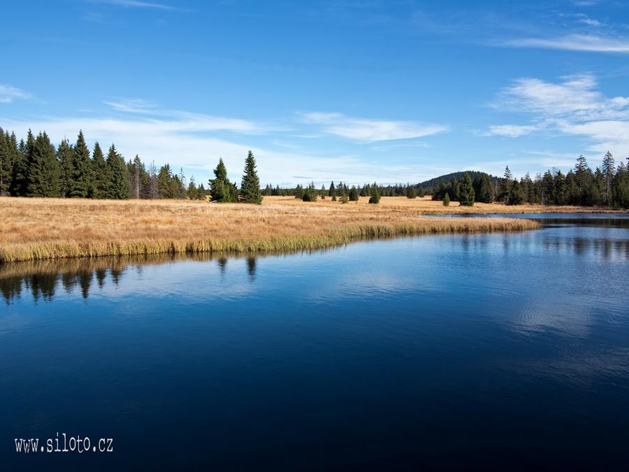 Mrtvý rybník v Krušných horách[lang=EN]Dead pond in the Ore Mountains[/lang]