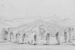 Alignements du Ménec 1850