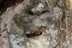 Reliéfy Kamenného úvozu[lang=EN]Reliefs of Stone Hollow[/lang]