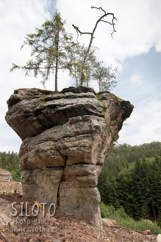 Puffball – Bizarre Rock Formation