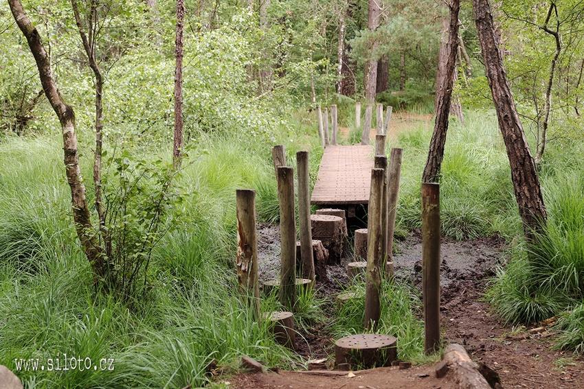 Bretaň po vlastní ose – Brocéliandský les