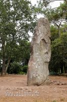 Menhir Géant du Manio